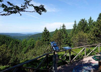 Urlaub Ferienregion Oberhof, Rennsteiggarten Aussicht