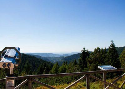 Blick aus dem Rennsteiggarten Oberhof